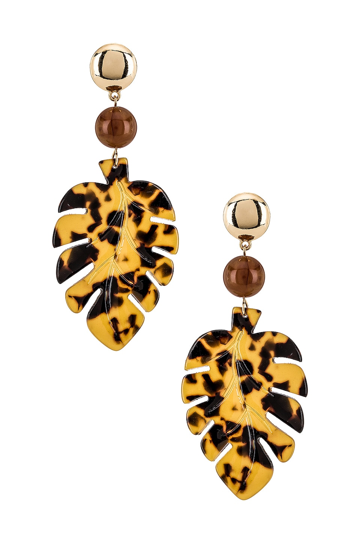 Ettika Leaf Earrings in Tortoise & Gold