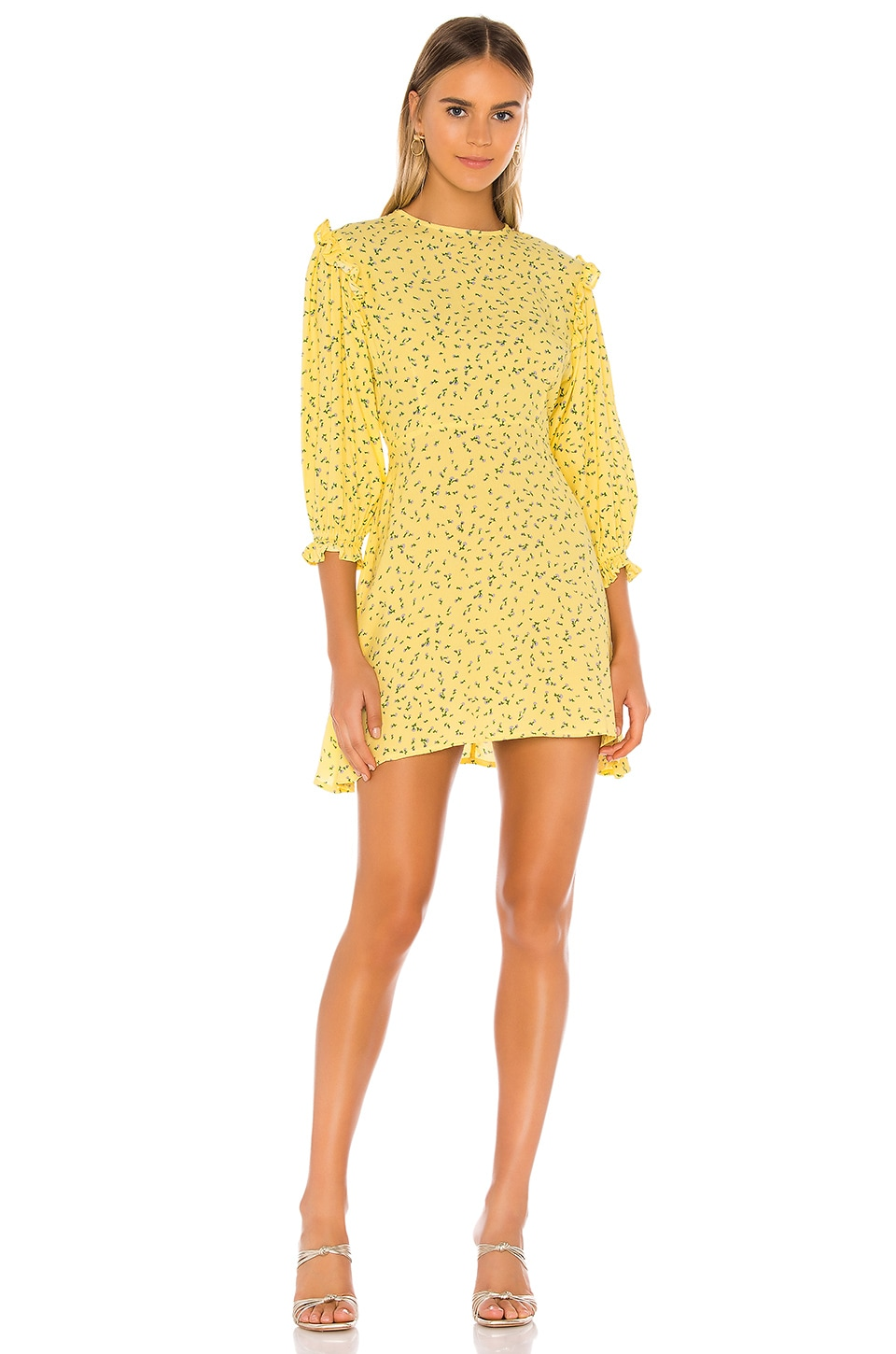 FAITHFULL THE BRAND Edwina Mini Dress in La Fica Floral