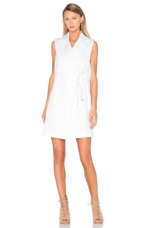 Undisclosed Dress