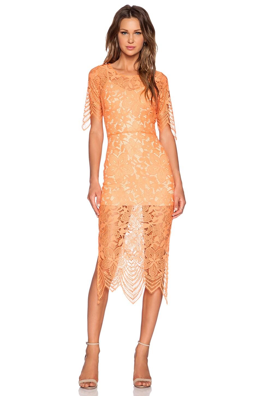 For Love & Lemons Luna Midi Dress in Tropical Orange