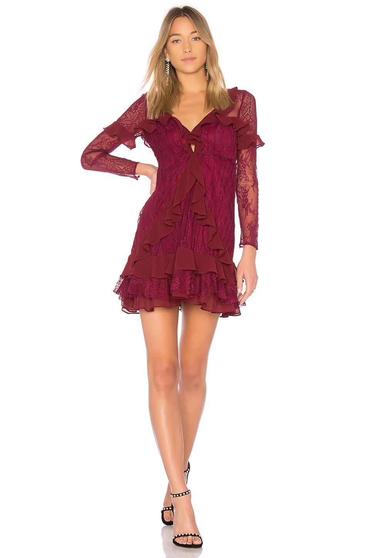 Daphne Lace Mini Dress by For Love & Lemons