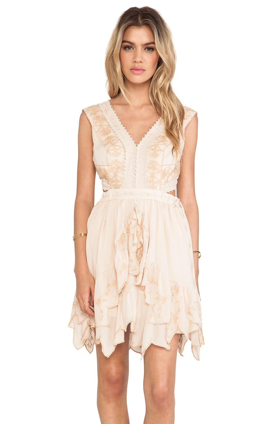 Free People Honeysuckle Rose Dress in Ballet