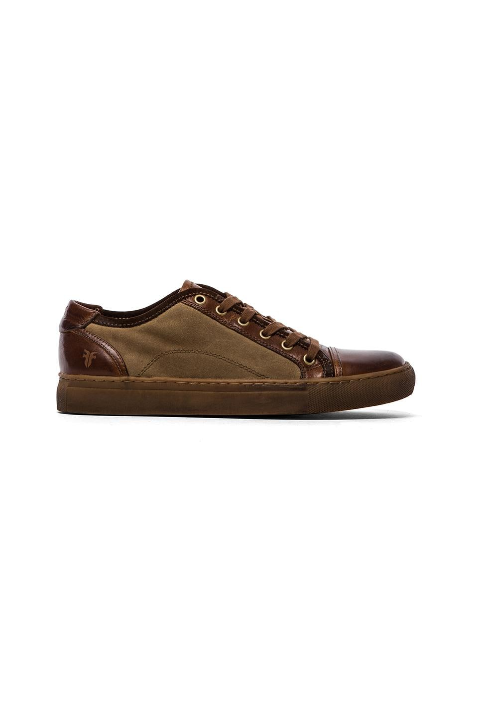 Frye Justin Low Lace Sneaker in Cognac