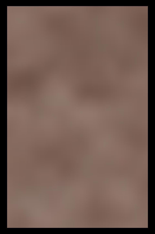Frye Kira Studded High Top in Grey