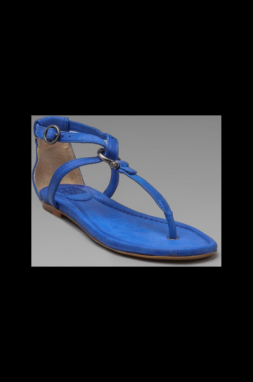 Frye Madison Strappy Sandal in Blue
