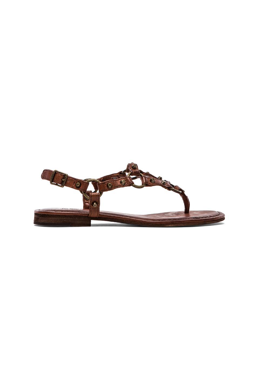 Frye Carson Ring Thong Sandal in Cognac