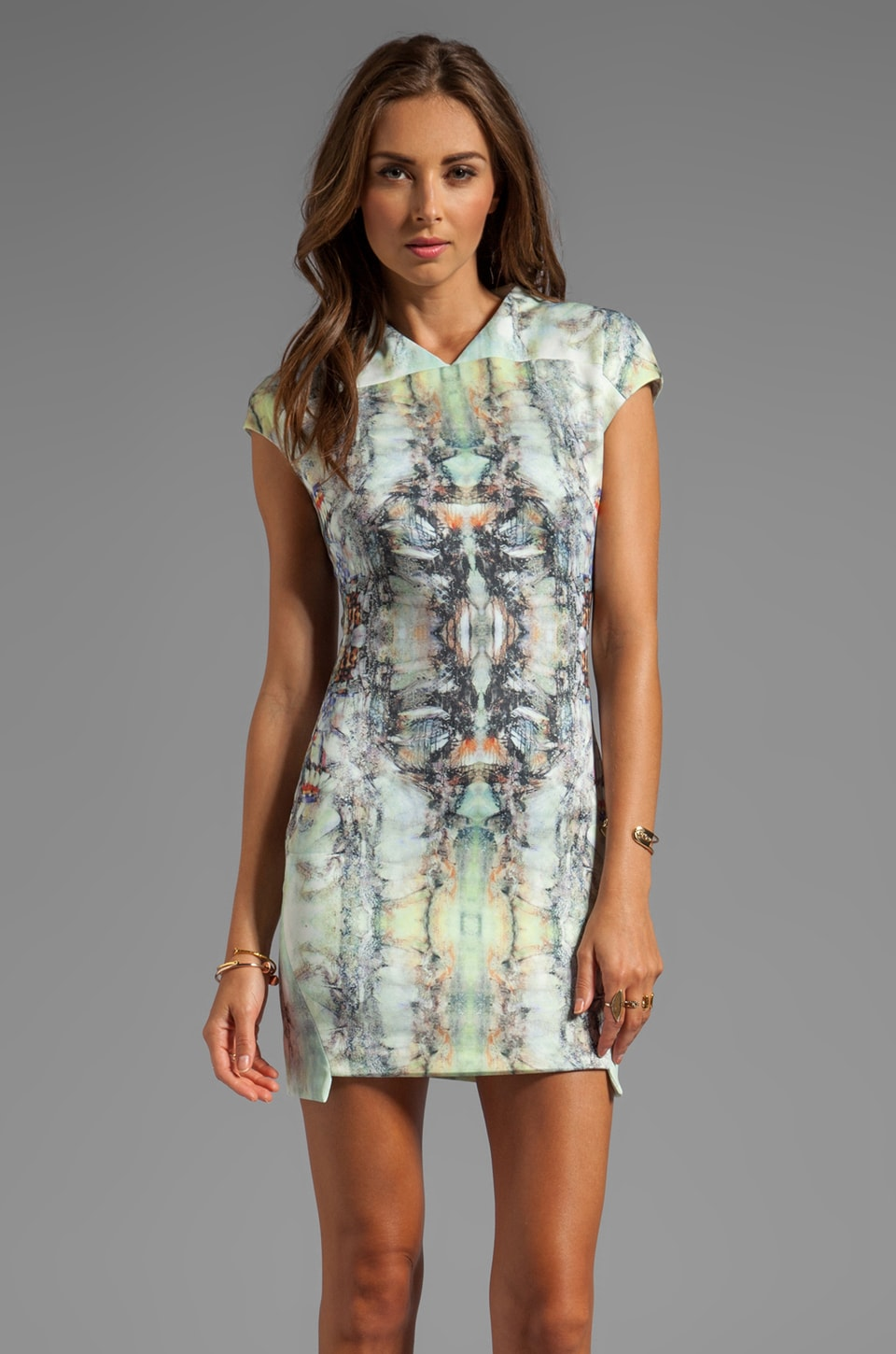 Funktional Evolution Cap Sleeve Dress in Evo