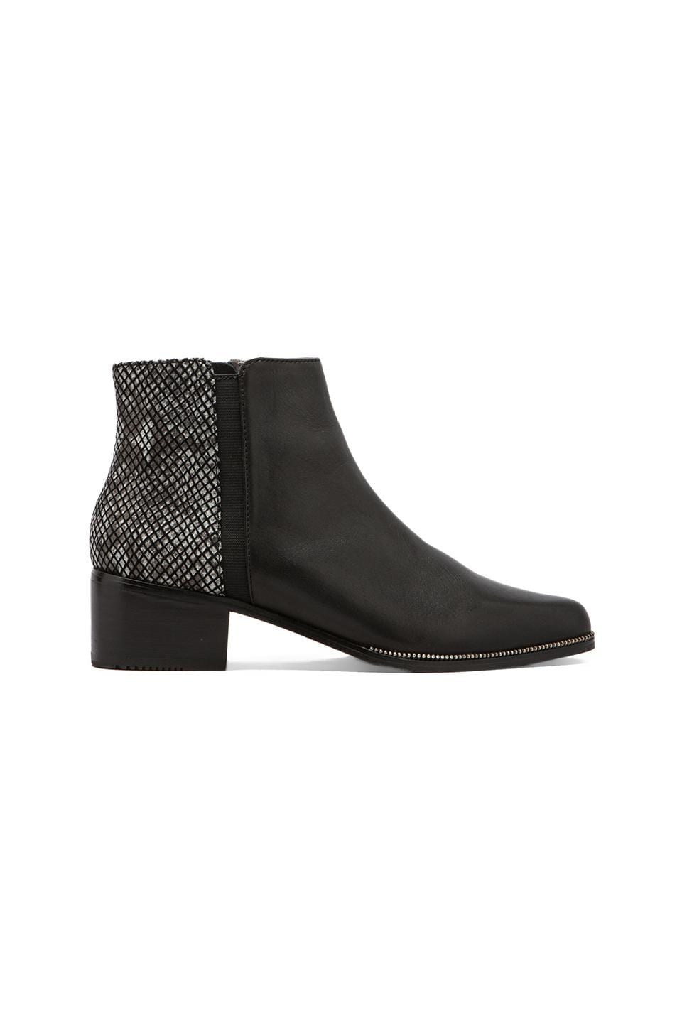 GREY CITY Walker Bootie in Black Cut Snake/Black