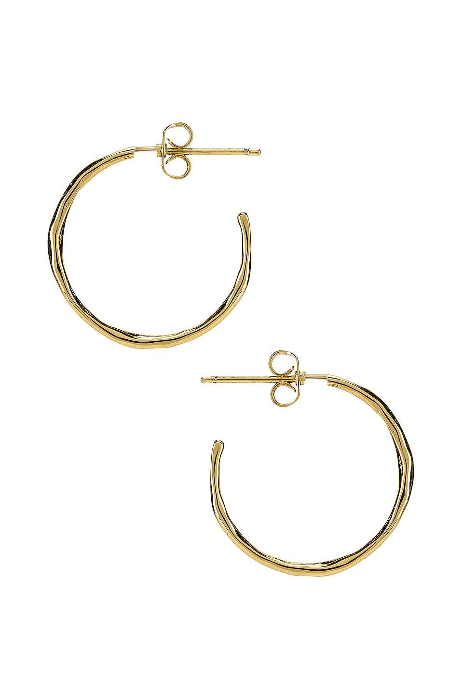 Gorjana Accessories GORJANA TANER SMALL HOOP EARRINGS IN METALLIC GOLD.