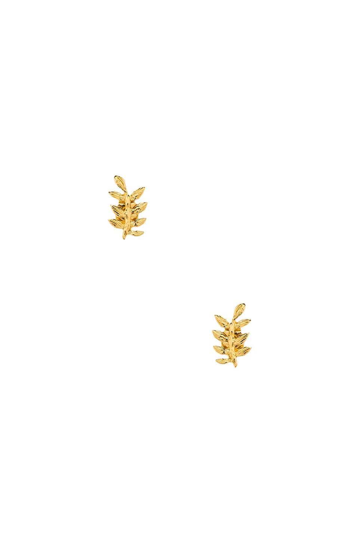 gorjana Olympia Studs in Gold