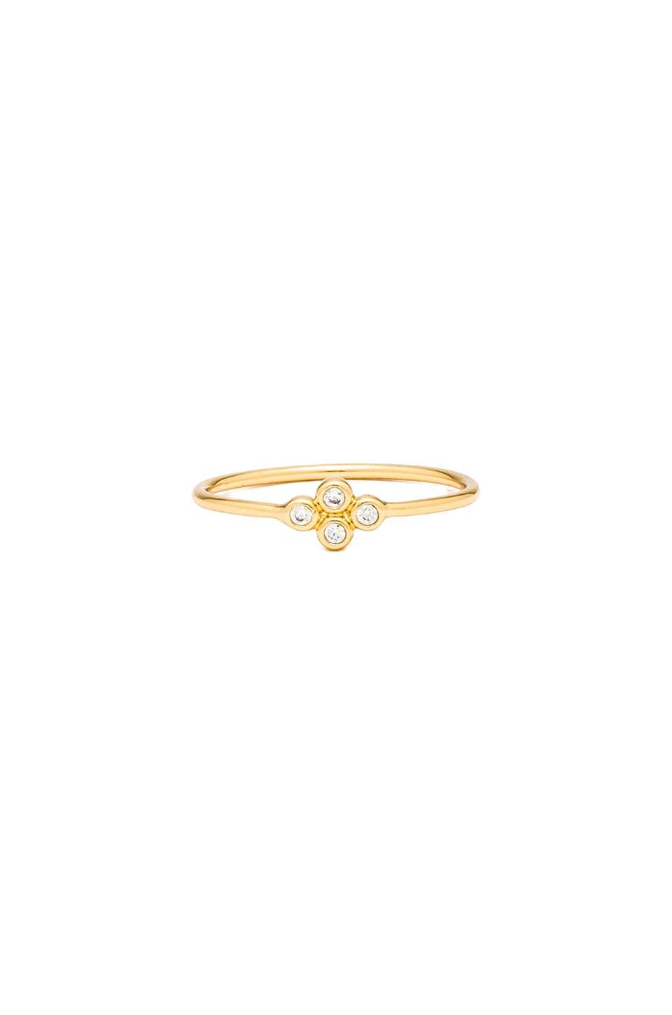 gorjana Lucia Ring in Gold