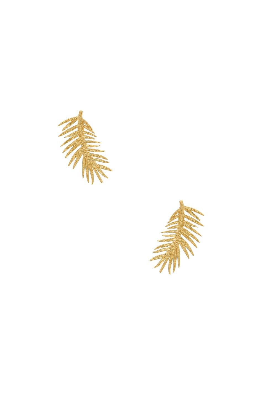 gorjana Palm Ear Climbers in Gold