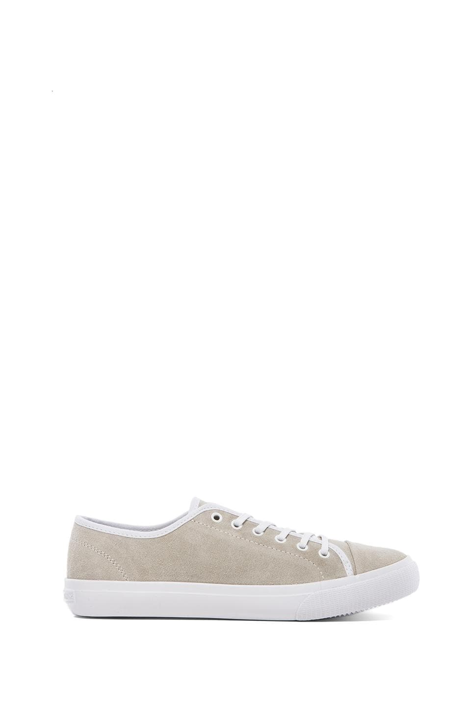 Generic Surplus Wellington in Off White Suede