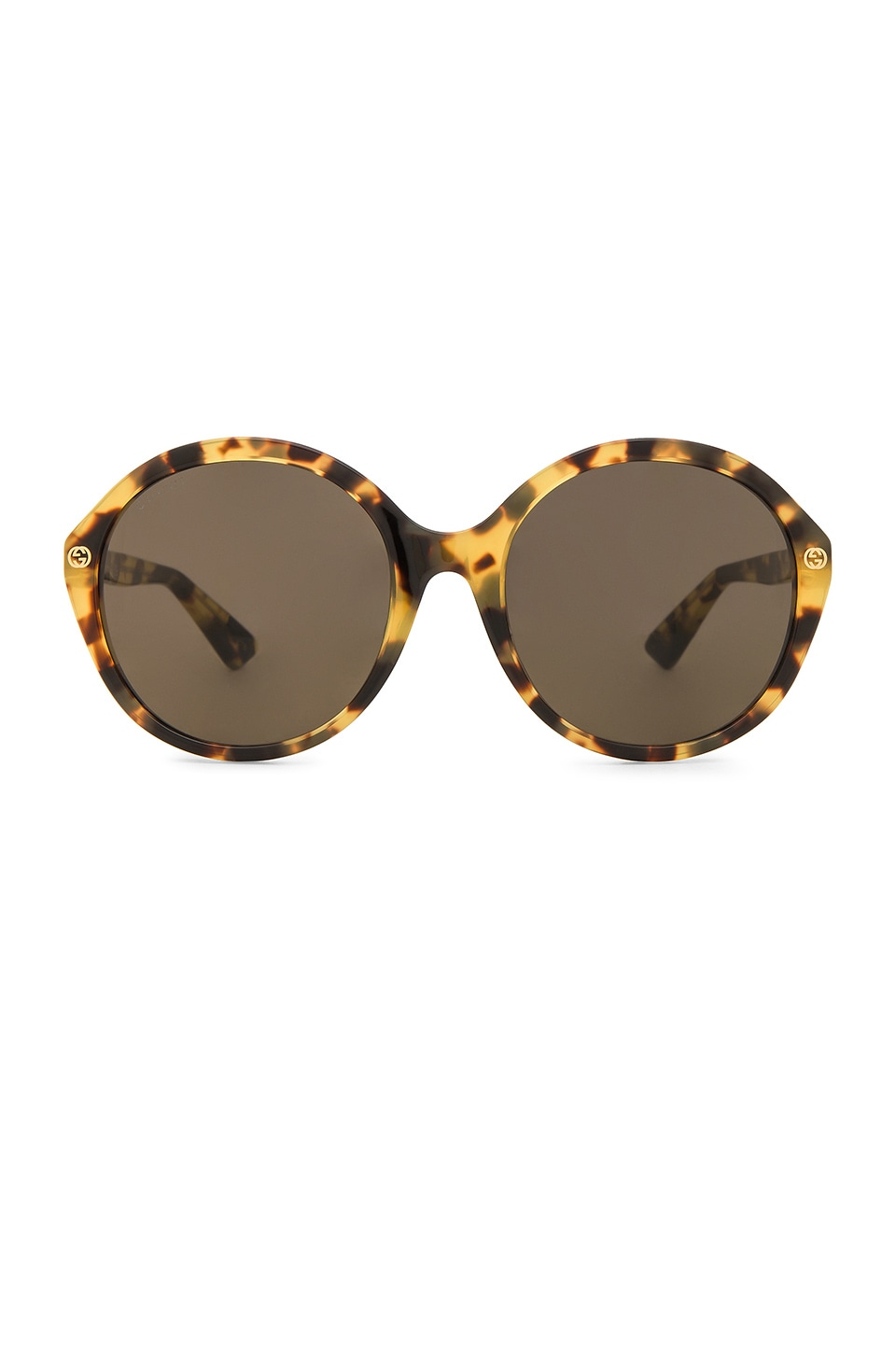 Gucci Oversize Round Acetate in Shiny Yellow Spotted Havana & Brown
