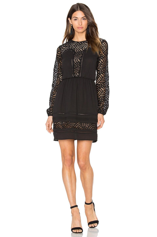 Greylin Aliston Lace Dress in Black