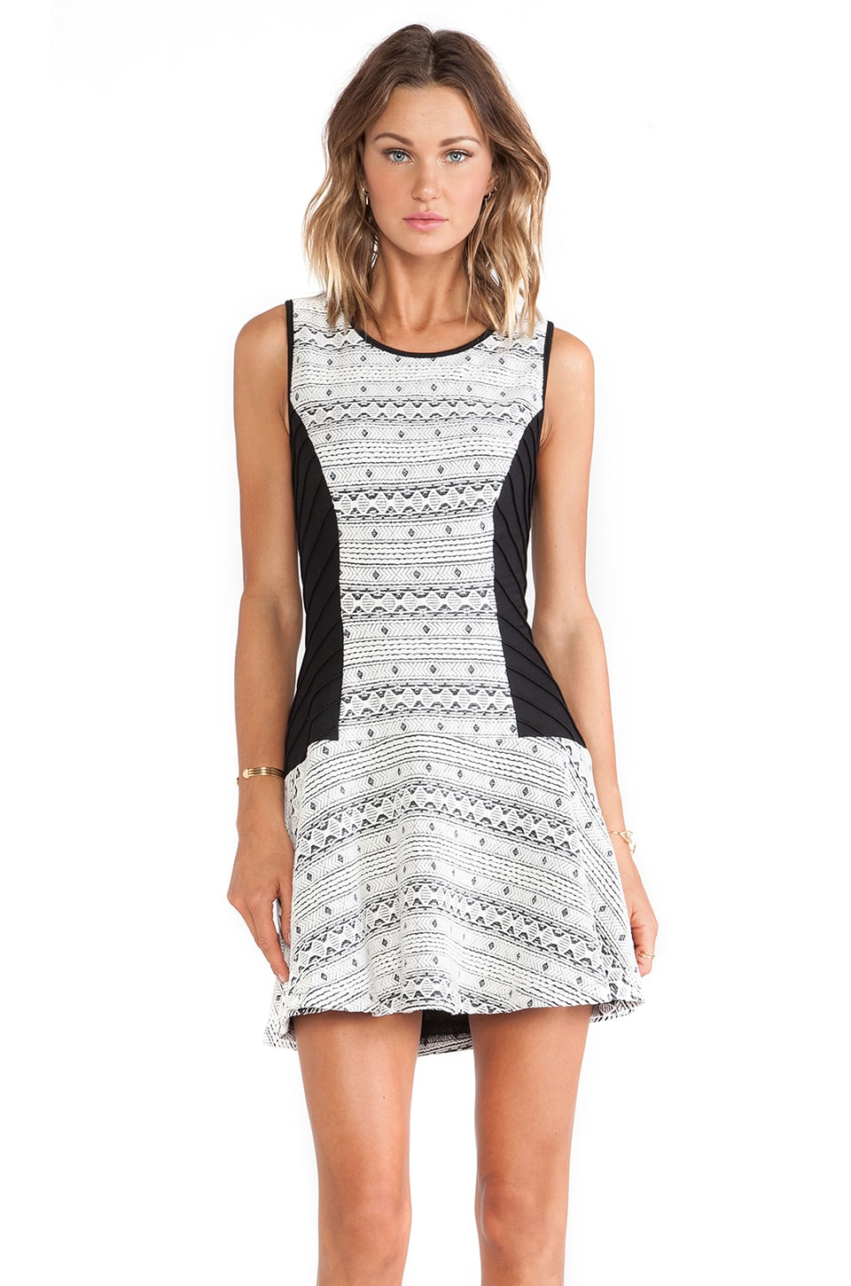 Greylin Evlin Knit Dress in Black & White