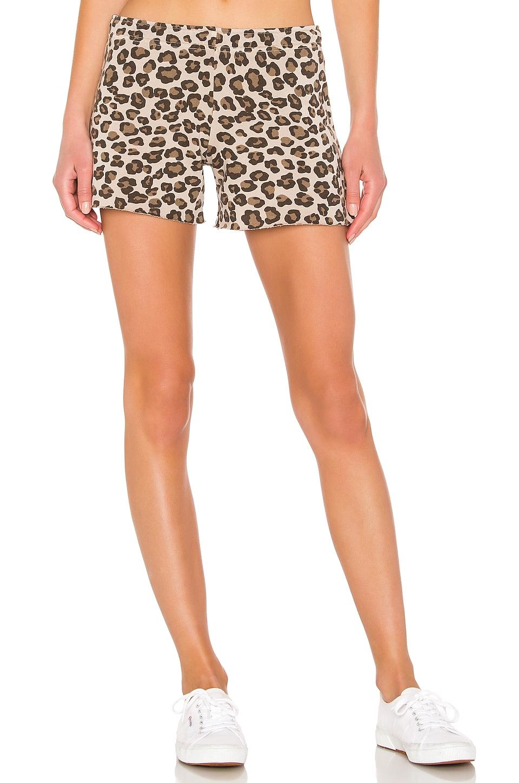 MONROW Leopard Elastic Waist Shorts in Dust