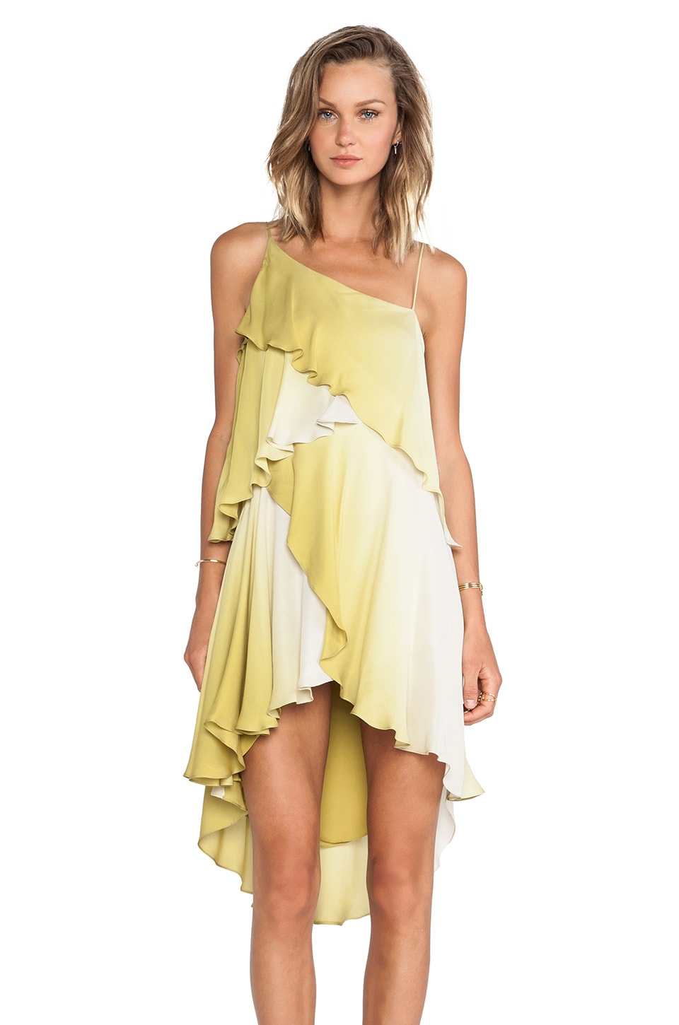 Haute Hippie Ruffle Dress in Limerick/Swan