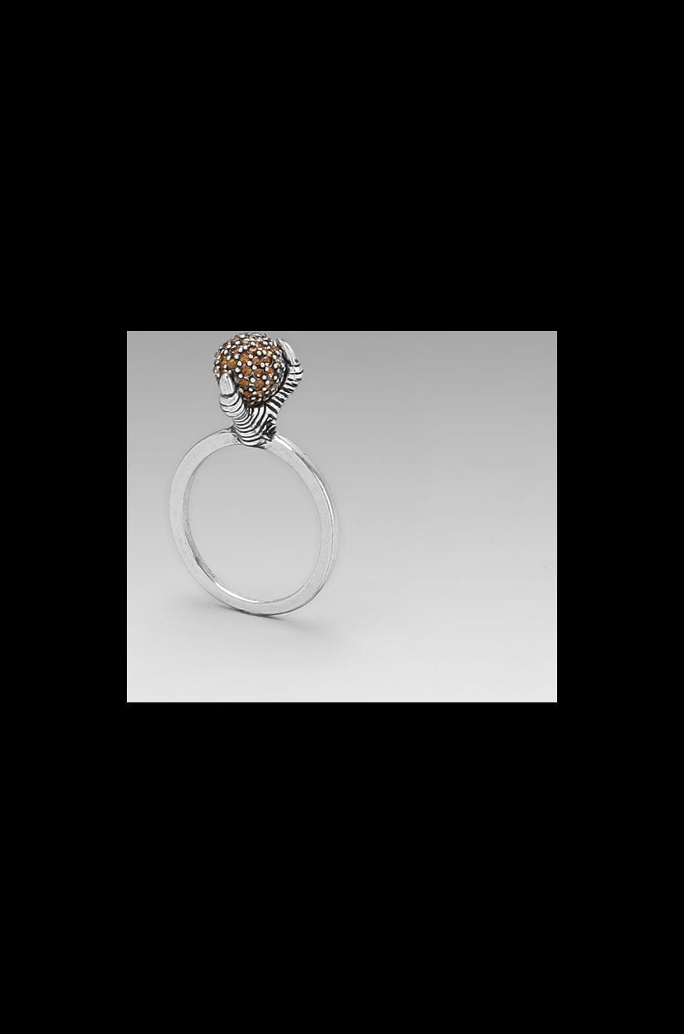 House of Harlow Talon Crystal Ring in Palladium with Dorado Crystal Pave
