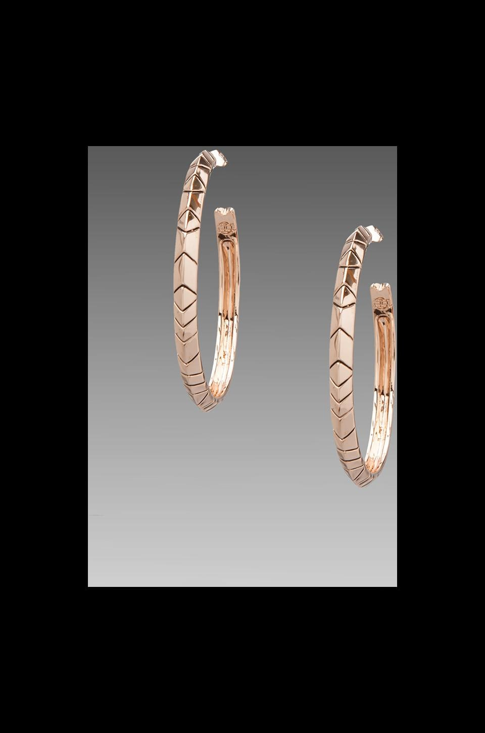 House of Harlow 1960 House of Harlow Tribal Hoop Earrings in Rosegold
