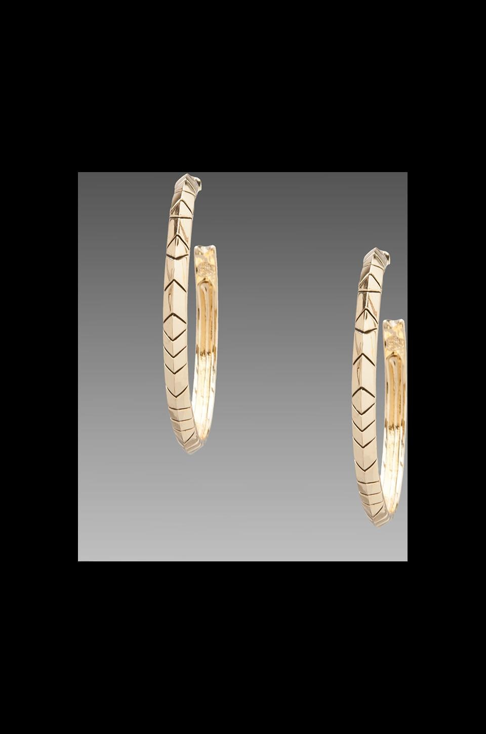 House of Harlow Tribal Hoop Earrings in Gold