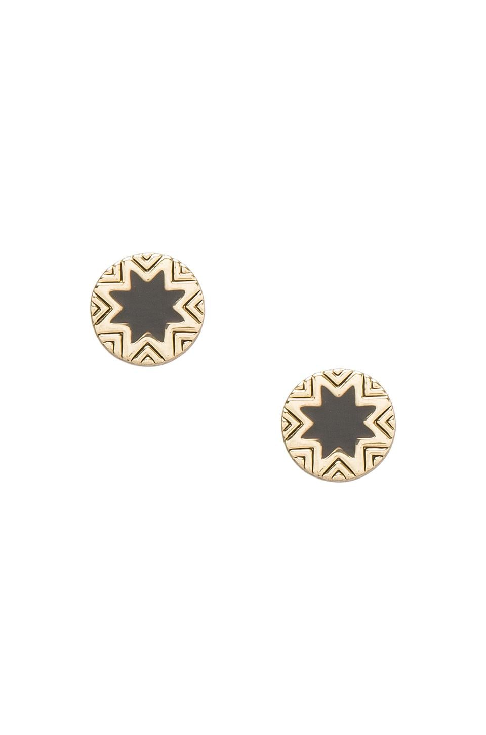 House of Harlow 1960 House of Harlow Mini Sunburst Stud Earrings Enamel in Gold Tone Black