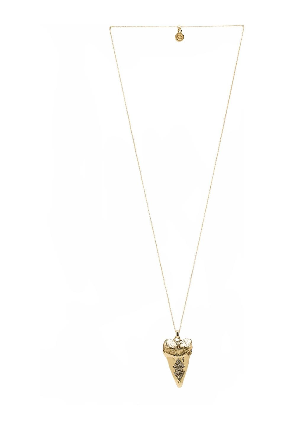 House of Harlow Tribal Tooth Pendant Necklace in Gold