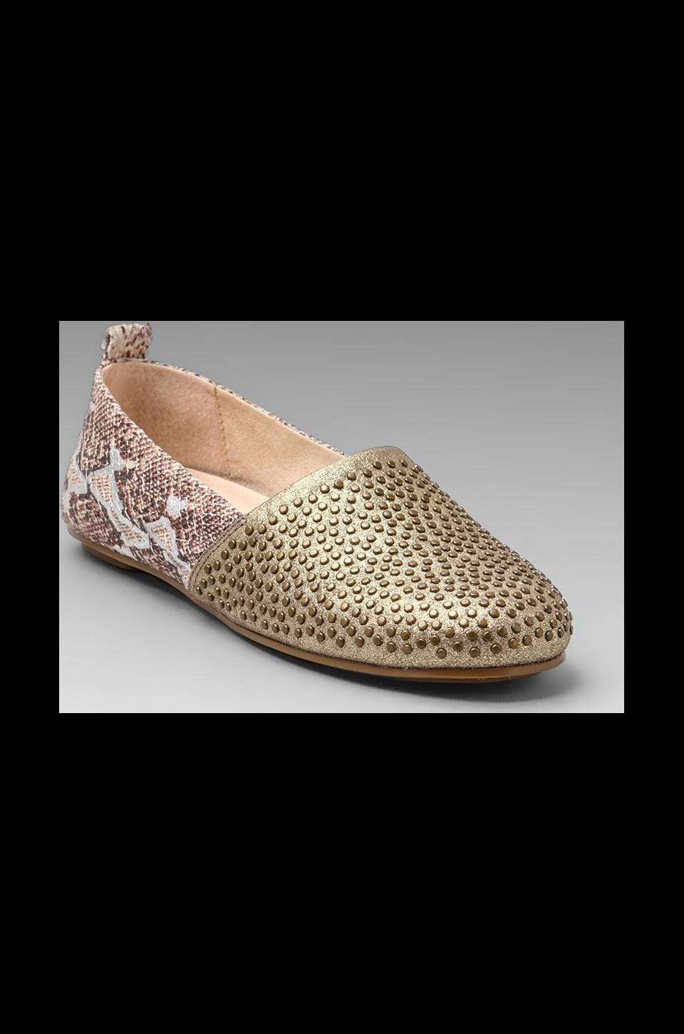 House of Harlow 1960 House of Harlow Stud Kye Flat in Brown/Rosegold
