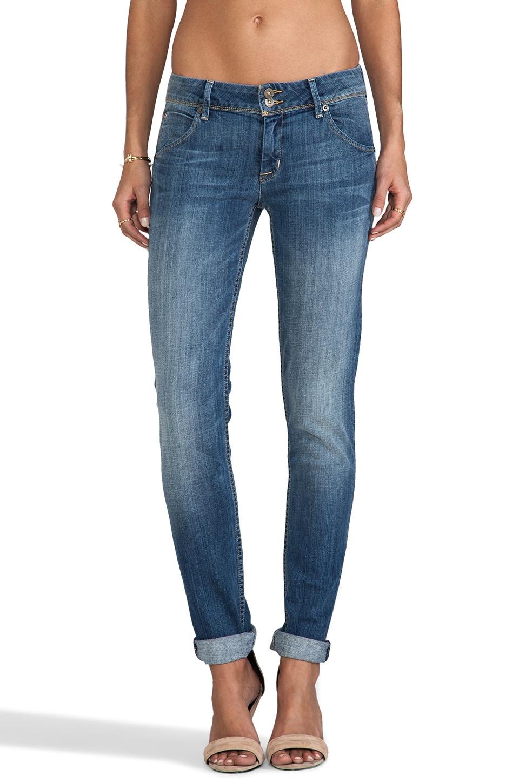 Hudson Jeans Collin Skinny in Milo