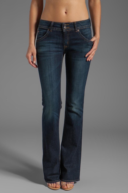 Hudson Jeans Bootcut in Undertones