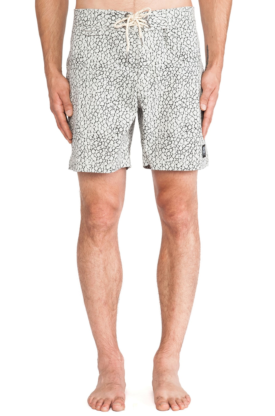 Insight Stingray Boardshort in Sting Ray Grey