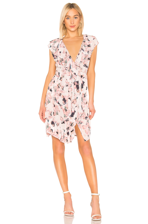 IRO Lovely Dress in Nude
