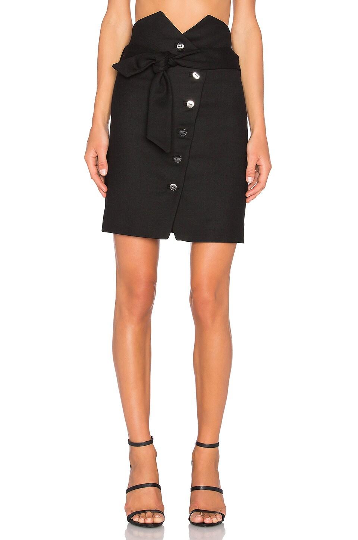 Gwlady Skirt by IRO