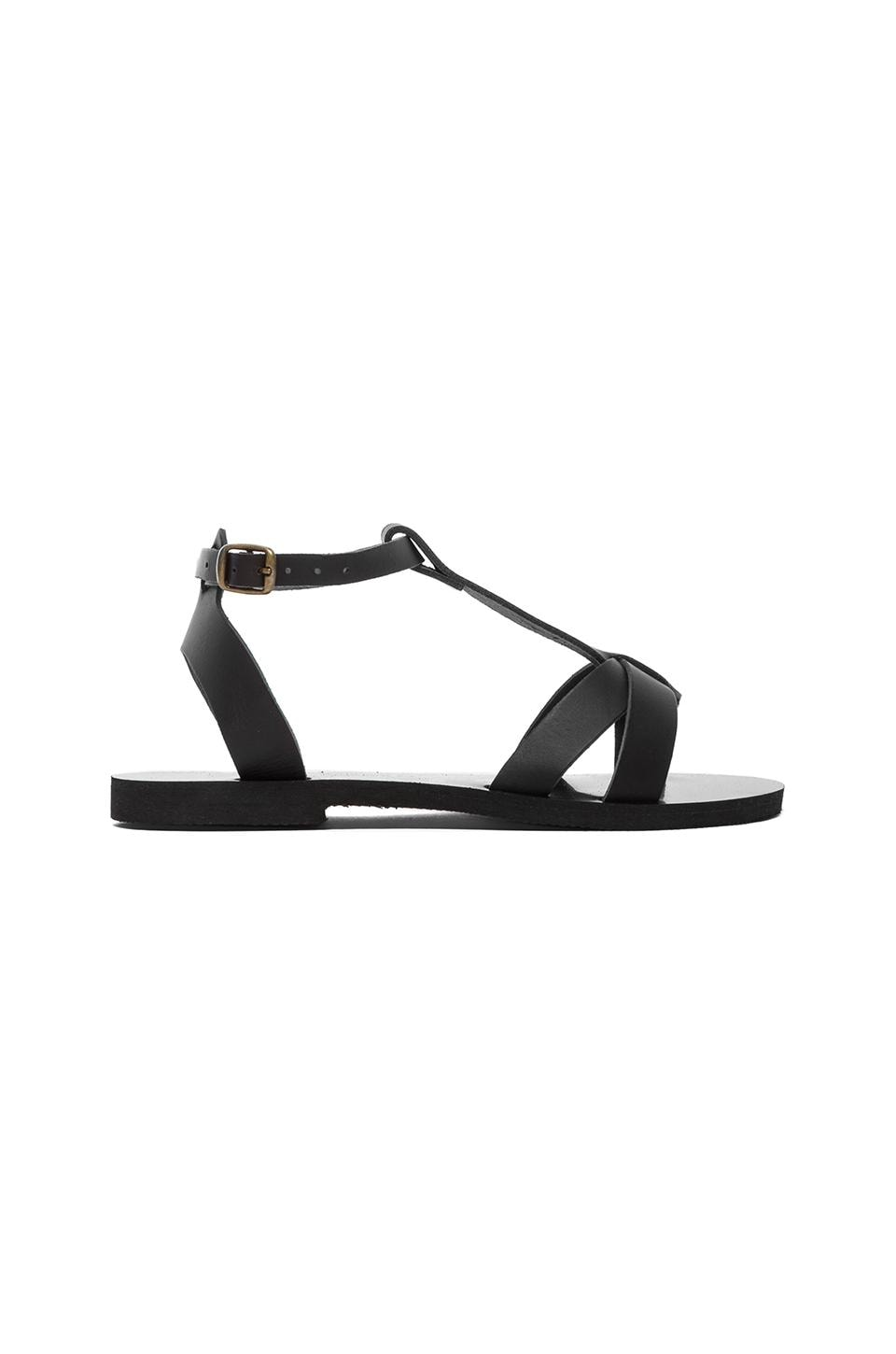 isapera Iris Sandal in Black