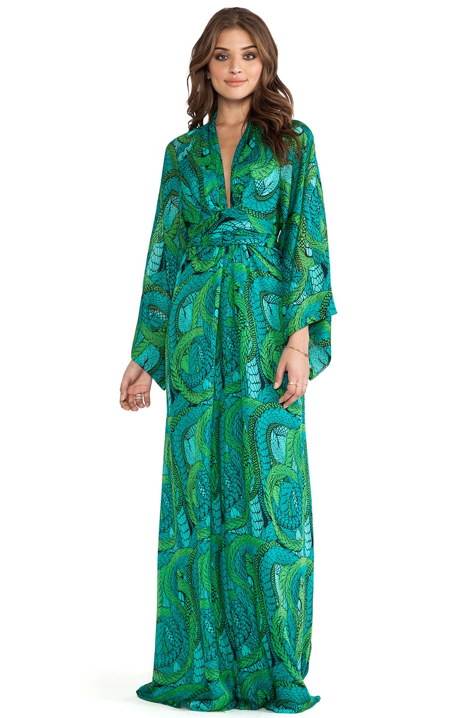 Issa Long Sleeve Printed Maxi Dress in Nile