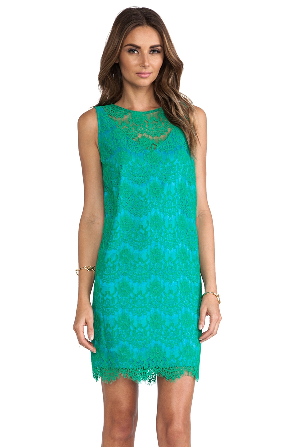 Jay Godfrey Griffin Dress in Emerald/Turquoise
