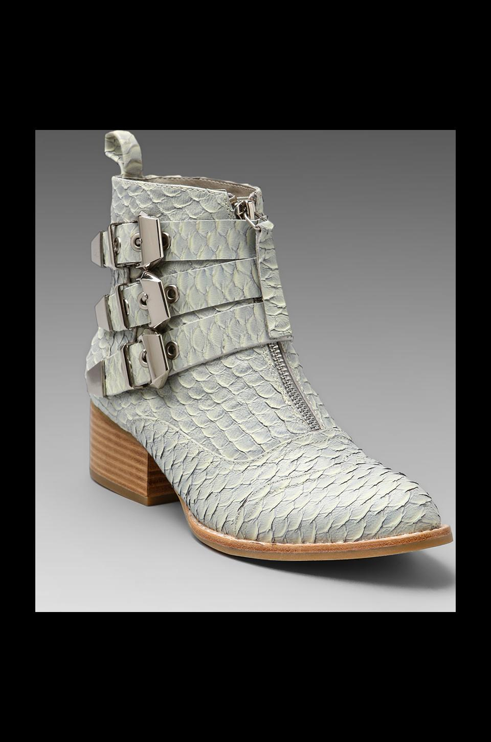 Jeffrey Campbell Allman in Light Grey Snake