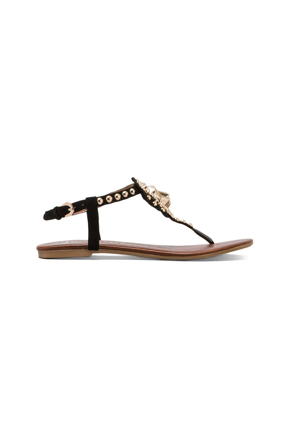 Jeffrey Campbell Mystic Leo Suede Sandal in Black/Gold