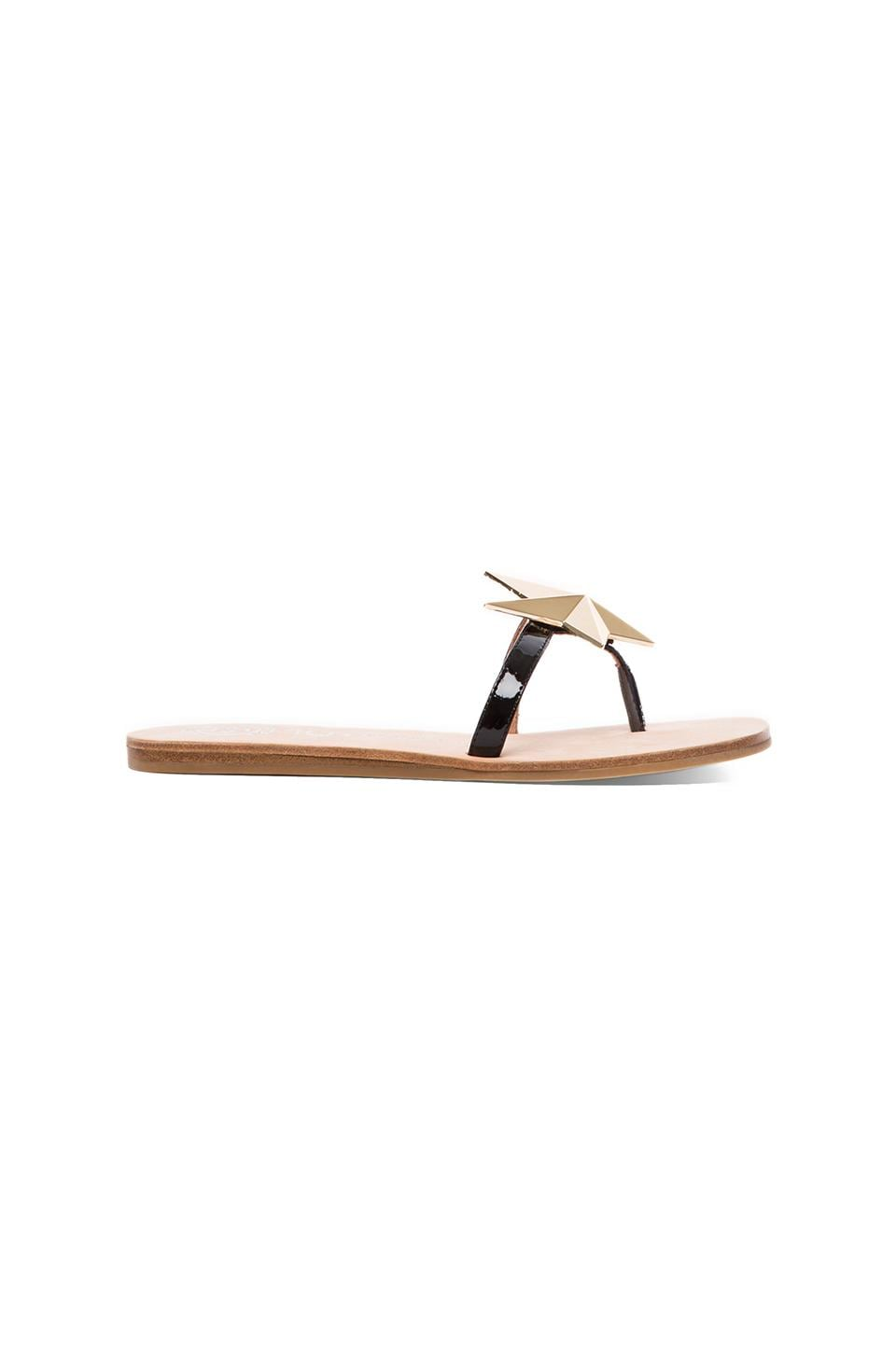 Jeffrey Campbell Norstar Sandal in Black & Gold