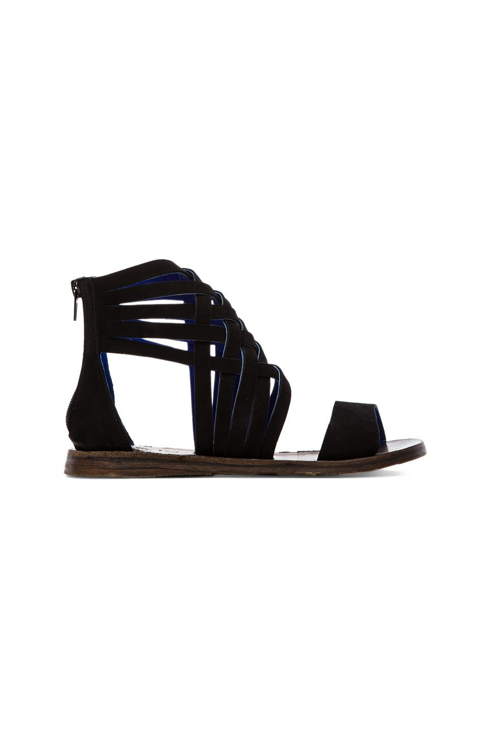 Jeffrey Campbell Moretz Gladiator Sandal in Black Nubuck