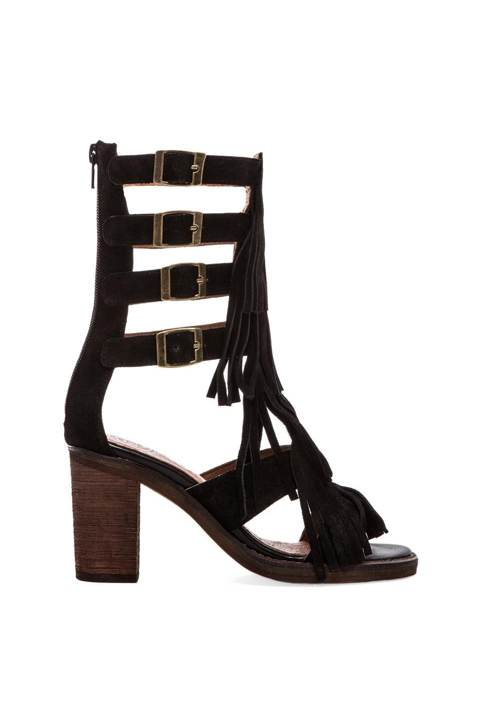 Jeffrey Campbell Omaha Strappy Sandal in Black