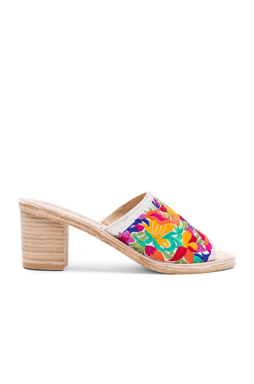Pushpita Heels