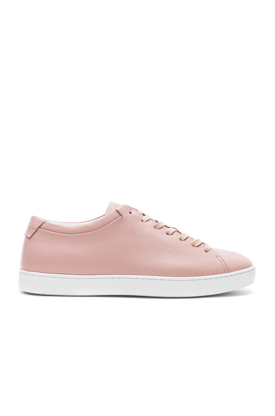Low Top by JOHN ELLIOTT