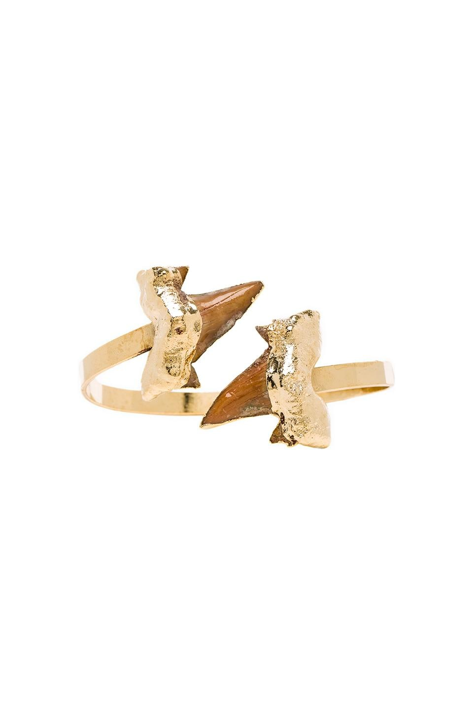 JNB Jaws Cuff in Gold