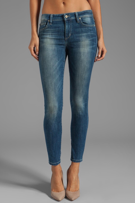 Joe's Jeans Ankle Skinny in Laurel