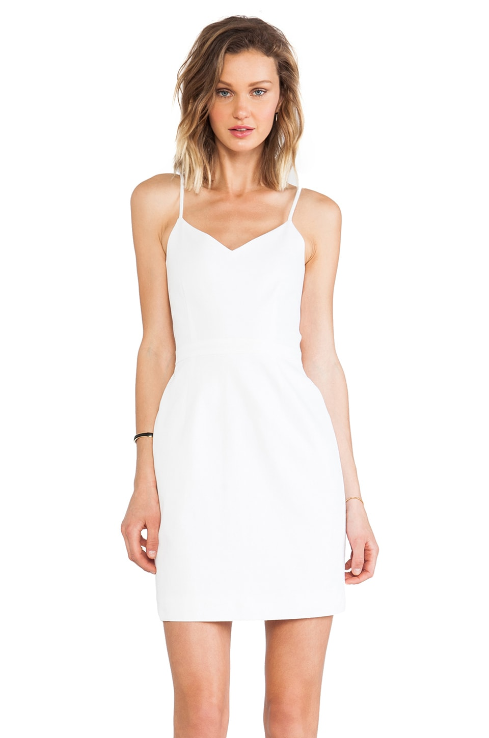 Joie Orchard Dress in Porcelain