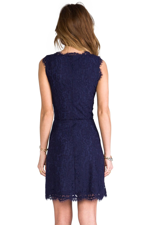 Joie Allover Lace Nikolina B Dress in Royal Navy