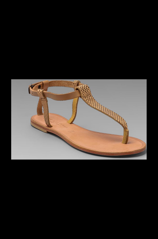 Joie a La Plage Shoal T Strap Sandal in Bronze/Tan