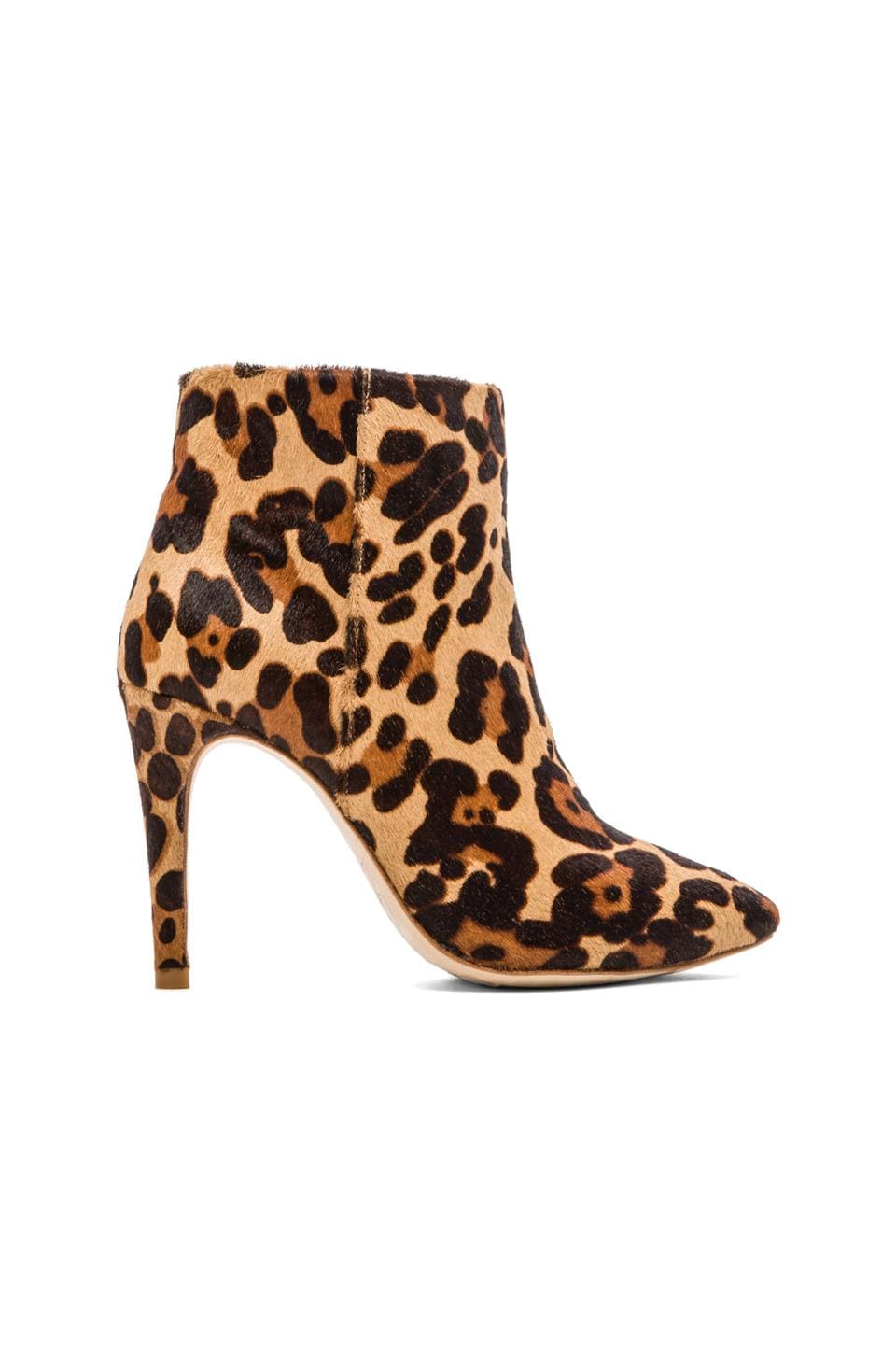 Joie Lina Calf Hair Boot in Leopard