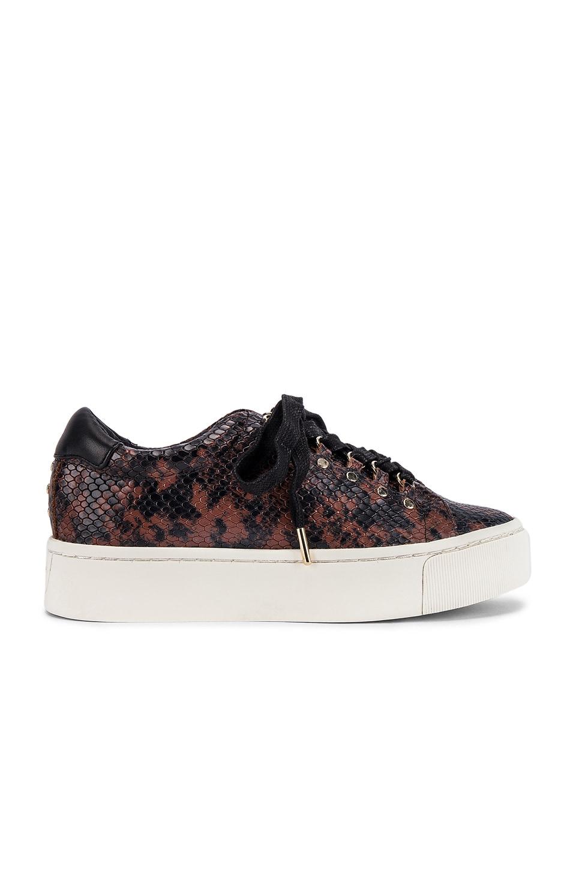Joie Handan Sneaker in Rosewood Python Print